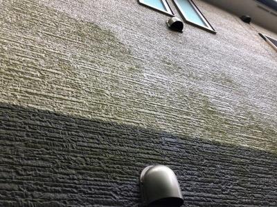 横浜市 U様邸 外壁クリーニング及び苔除去工事